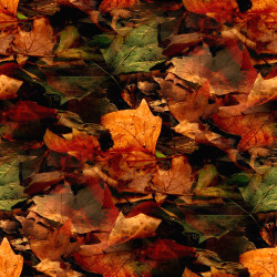 autumn_leaves.jpg